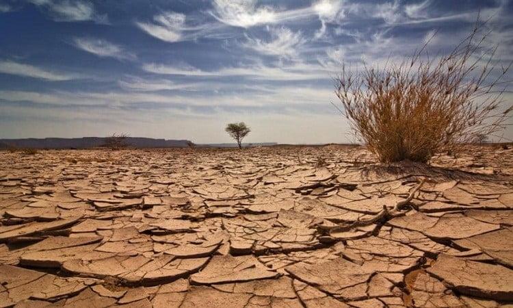 küresel ısınmanın sonuçları